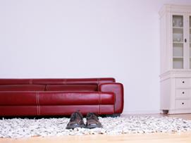 tiere wandtattoos. Black Bedroom Furniture Sets. Home Design Ideas